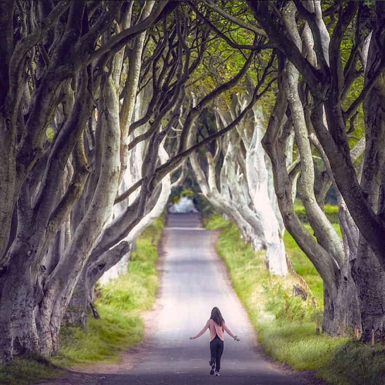 19. @storytravelers in The Dark Hedges, featured in Game of Thrones