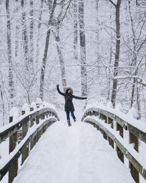 Winter wonderland time! This was taken in Rock Creek Park, down the street from where I live in Washington DC during the big snow storm we had in Jan 2016. I think we ultimately had around 25 inches but this was captured during the main event. My boyfriend @beingdave took it while we were out shooting in the storm. It was so pretty and there were hardly any people around.