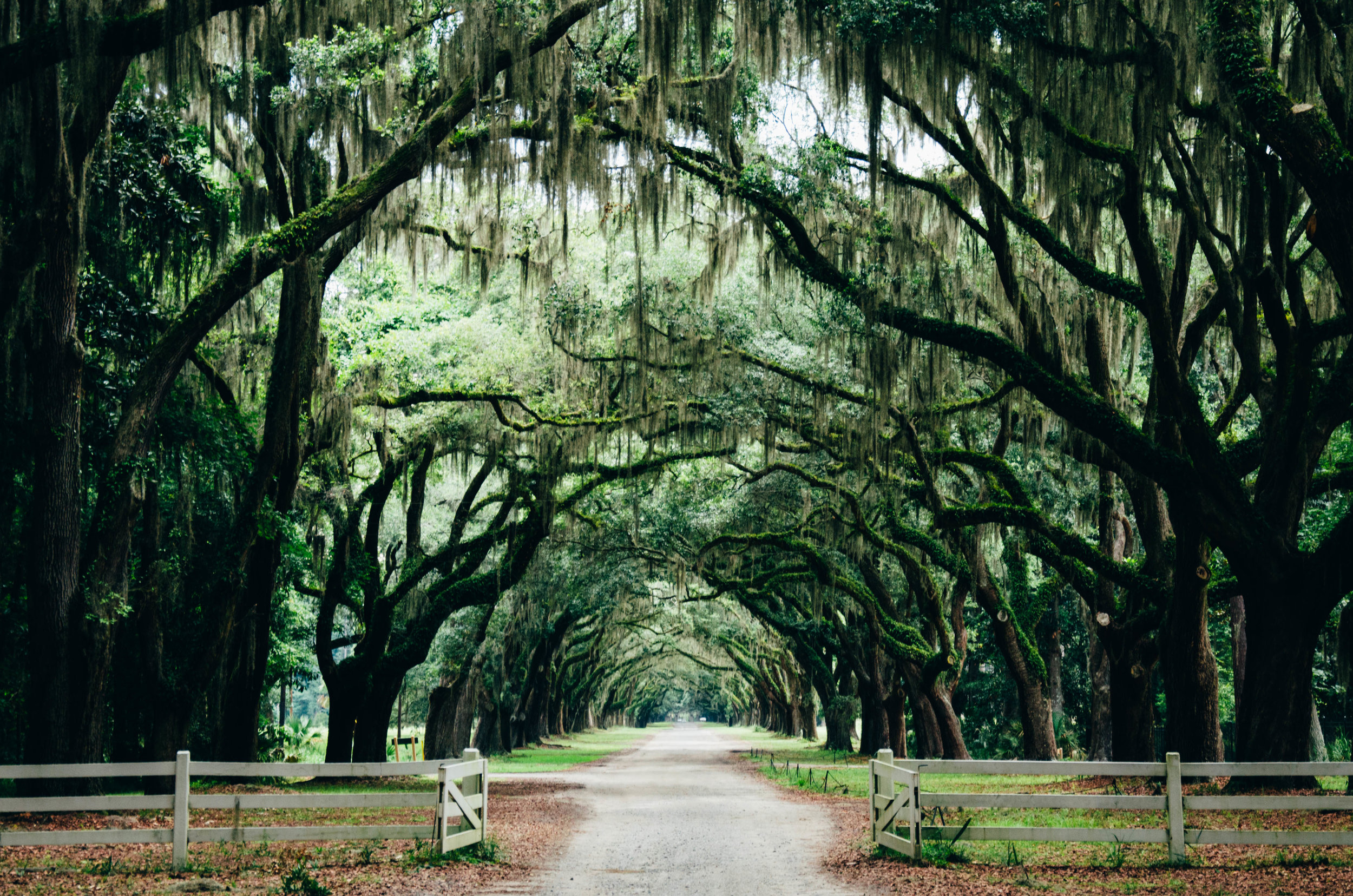 Best Places To Travel South East Usa