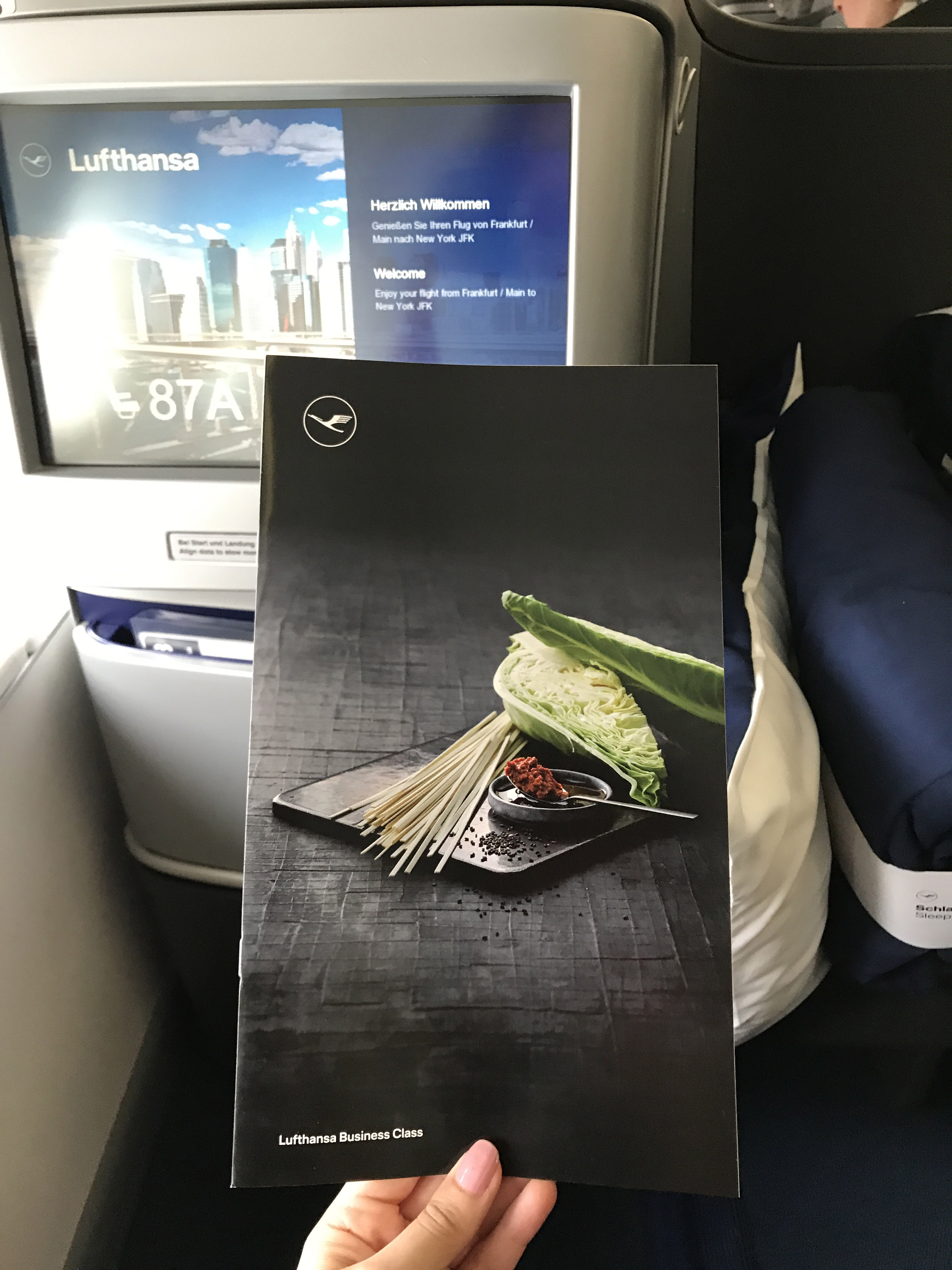 Lufthansa Business Class Flight Review with New Livery and Logo Redesign