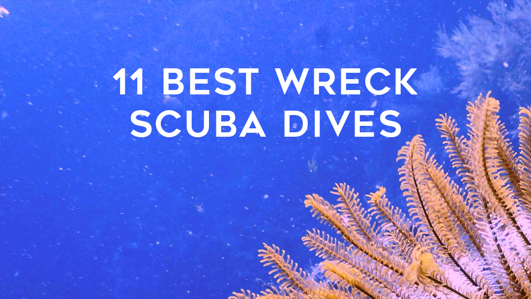 11 best wreck scuba dives