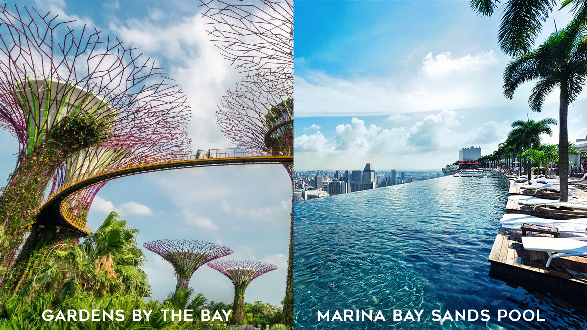 Singapore Gardens by the Bay and Marina Bay Sands Pool