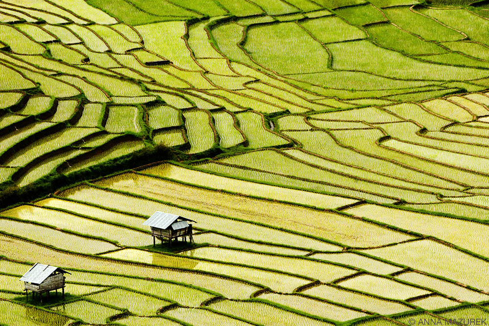 11 Budget Tips to Save Money for Travel RICEFIELDS_THAILAND
