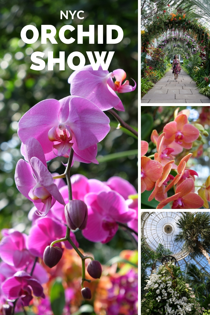 New York Botanical Garden Orchid Show NYC