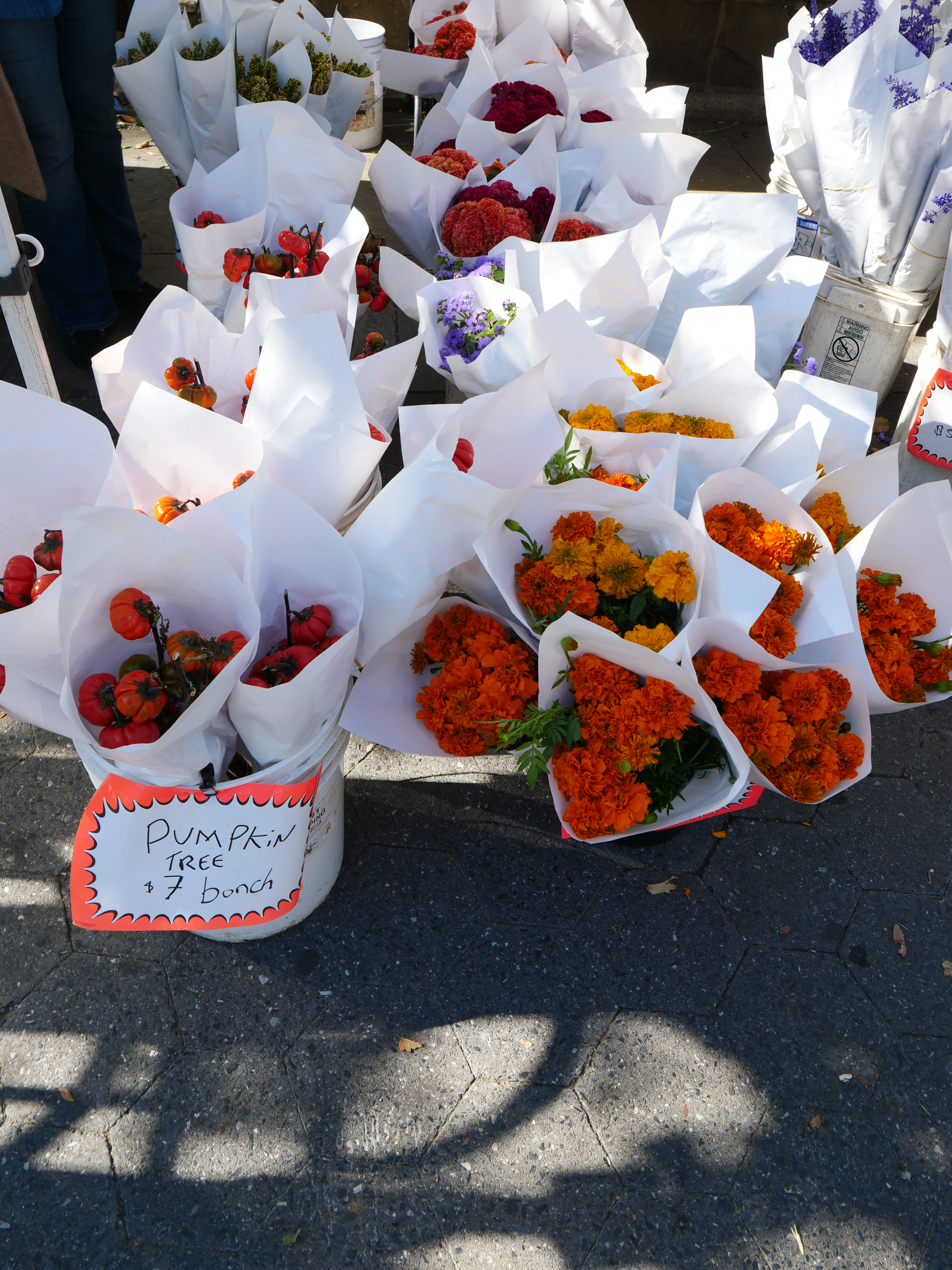 11 Things To Do for Halloween in NYC pumpkin tree Union Square greenmarket