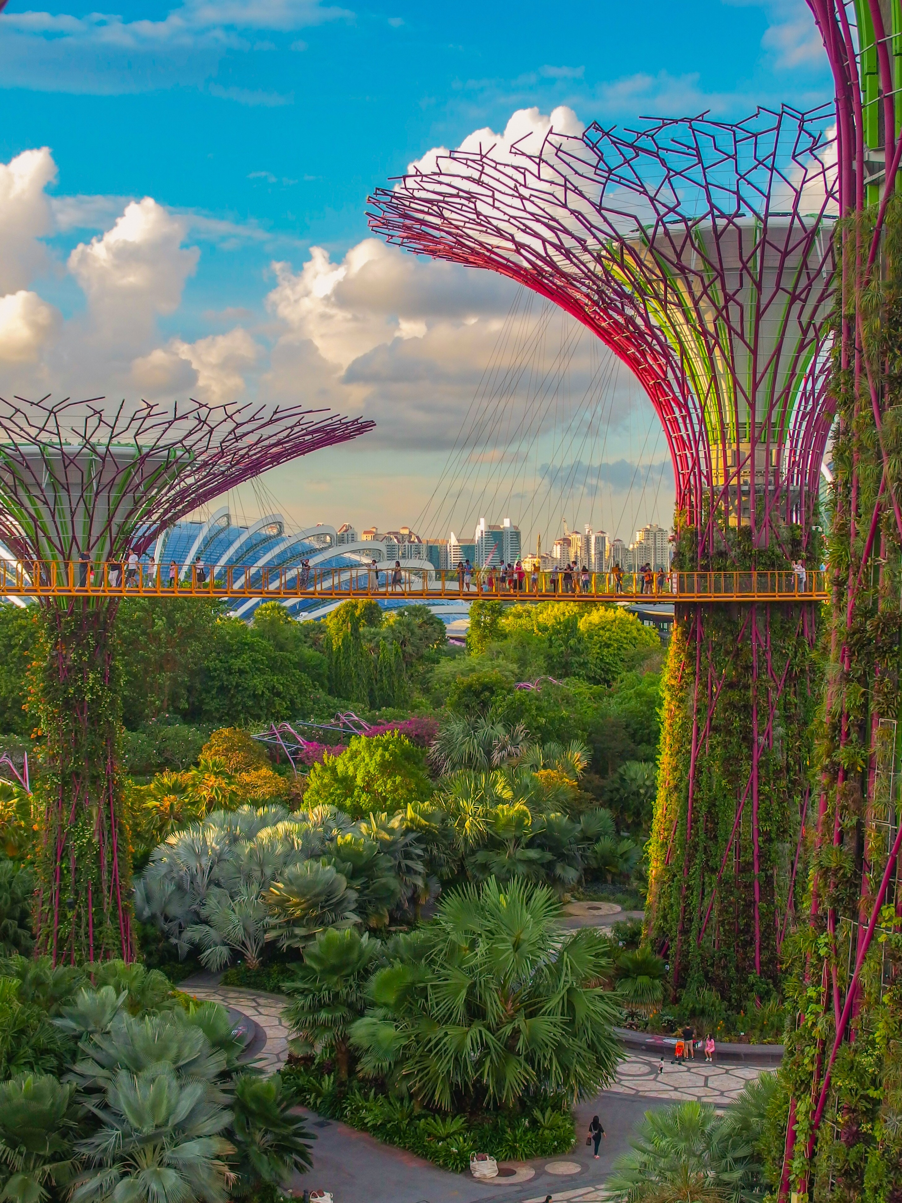 Singapore Supertrees NYBG Orchid Show